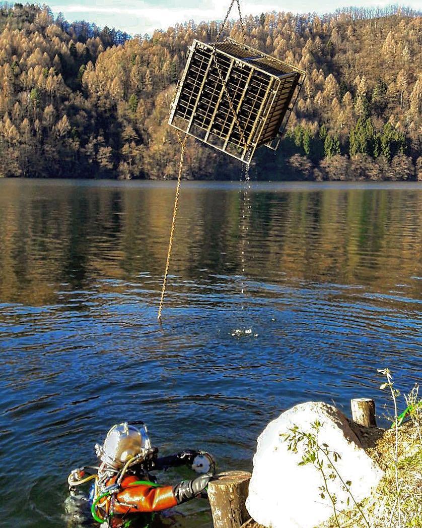 vini cantina romanese affinamento lago di levico