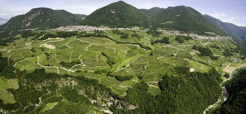 Cantina-corvée-valle di cembra