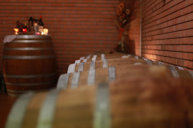cantina vini albino martinelli